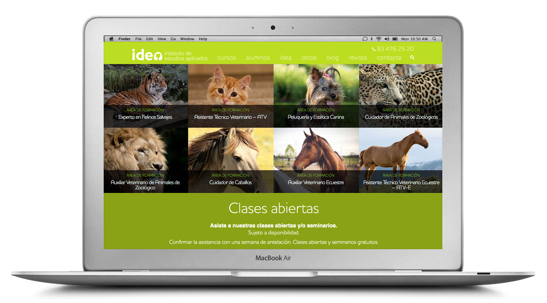 idea cursos animales